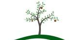 BayWa_Stiftung_Logoanimation_v02_ProRes.pct